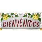 image for Bienvenidos Framed Spanish Welcome Art Glass Panel 9 x 20