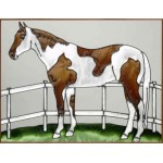 image for Pinto Paint Horse Framed Art Glass Panel 11 x 14
