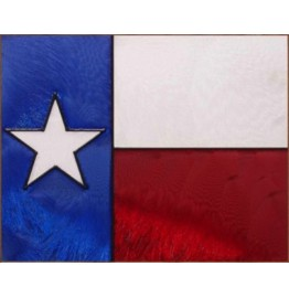 image for State of Texas Flag Framed Art Glass Panel 10 x 8